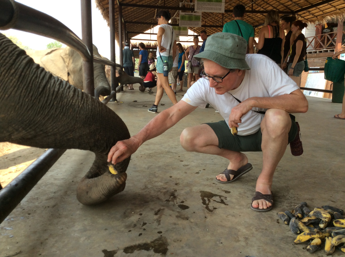 Here I'd feeding bananas to a rather elderly elephant named Wasana. She's about 65 years old and a fairly slow eater for an elephant -- so it took a little patience.