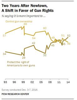 gun poll