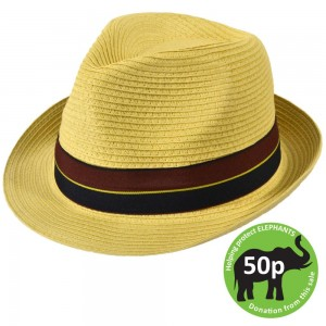 straw-trilby-hat-with-blue-and-red-band-3532-0-1371824603000