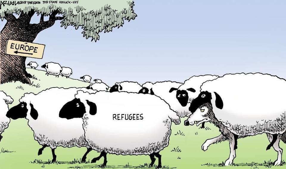 SyrianRefugeesWolvesColorAriiailW